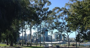 City view from Kings Park